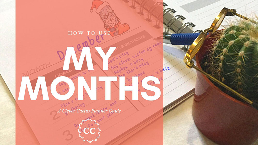 My Months Clever Cactus