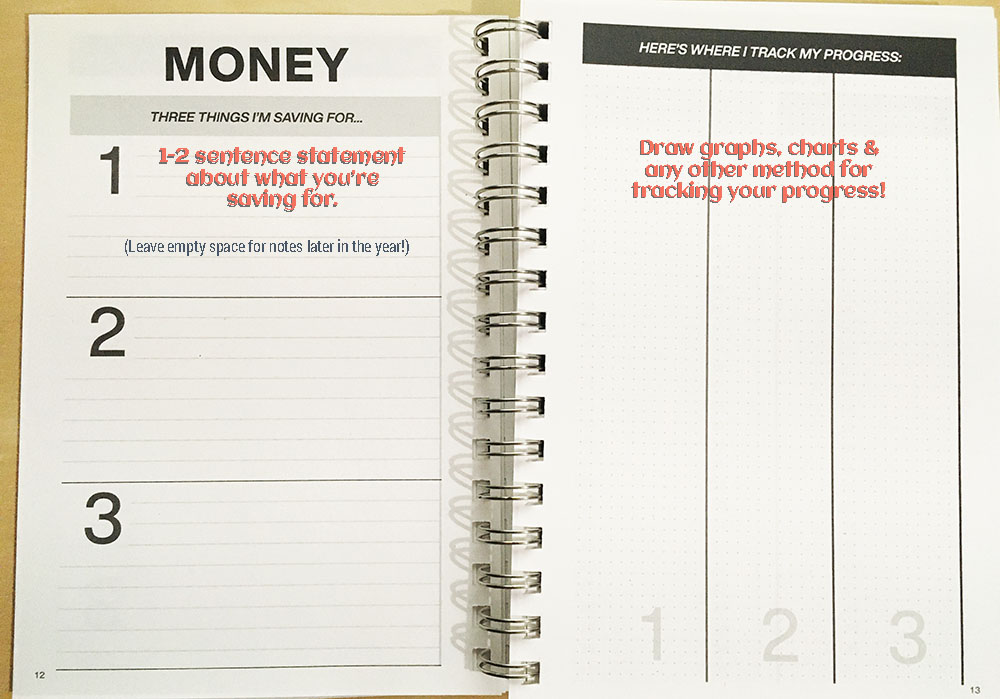 Clever Cactus planner - My Year guide - Money page 12 - 13