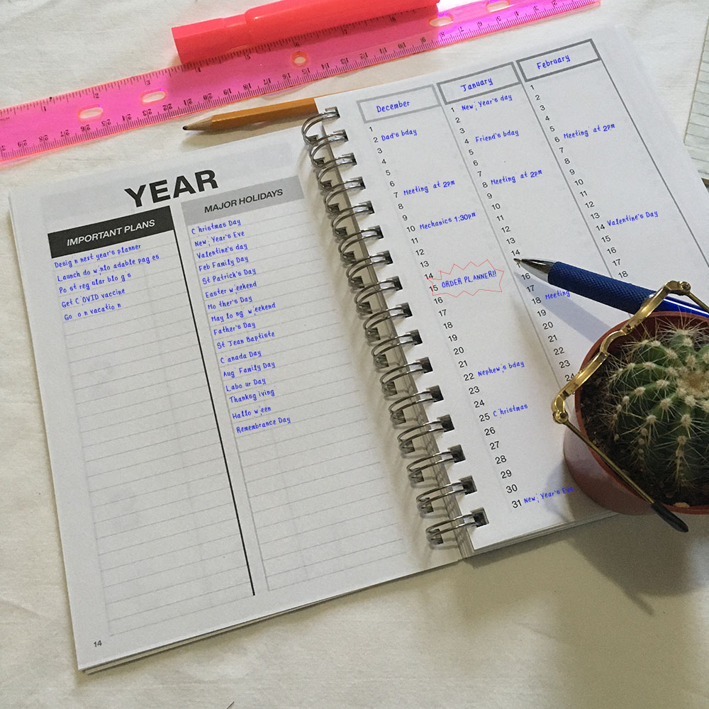 Clever Cactus planner - My Year guide - example