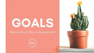 Clever Cactus - Goals defined why important