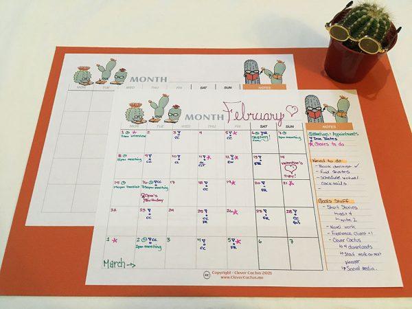 Clever Cactus Calendar colour glamour