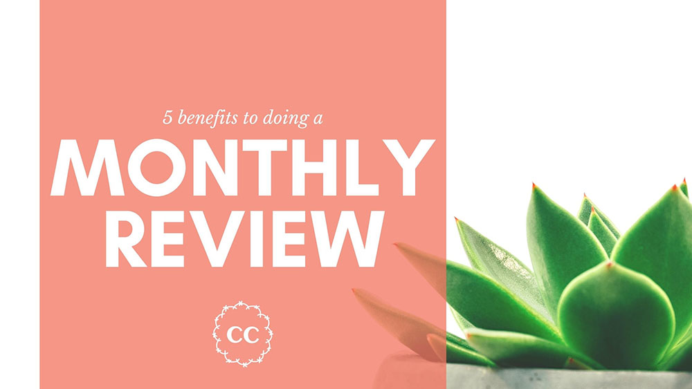 Clever Cactus Monthly Review - 5 Benefits to doing one