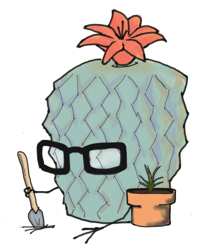 Clever Cactus Spring - Gardening