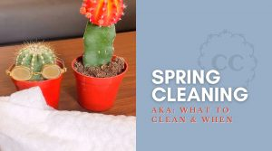 Spring Cleaning Lead Image