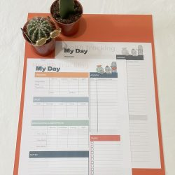 Clever Cactus Daily Health Tracking Colour and Black & White
